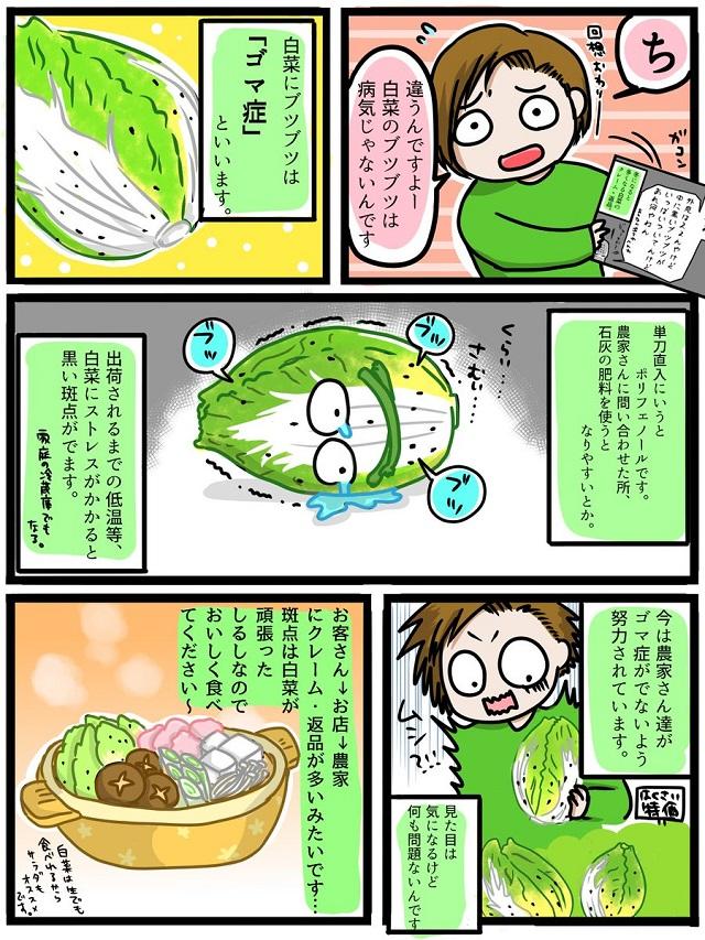 白菜の黒いブツブツの正体