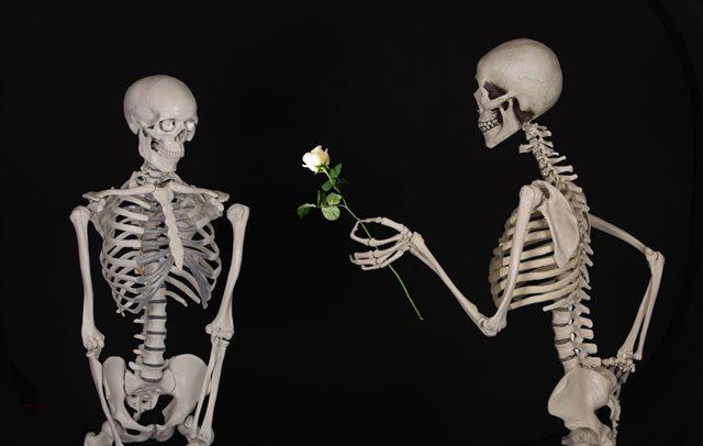 恋する骸骨