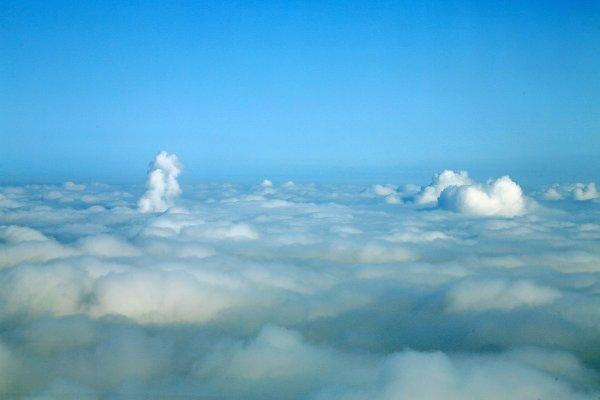 東京スカイツリーに雲海