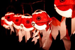 金魚ワンダーランド